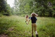 Rear view of siblings running on grassy field in forest - CAVF53030