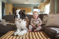 Portrait of cute baby boy sitting with dog on couch in living room at home - CAVF53119