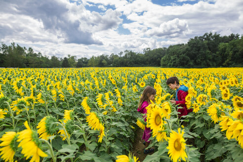 Siblings standing by sunflowers at farm against cloudy sky - CAVF53152