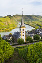Germany, Rhineland-Palatinate, Vineyards above Bremm on the Moselle river - RUNF00130