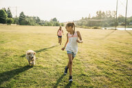 Girls running through field with labradoodle puppy - MINF09435
