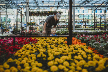 Father with son looking at flowers in greenhouse - CAVF53375
