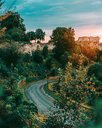 Nature scene of a winding road amidst the trees in France - INGF06245