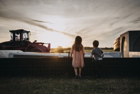 Rear view of siblings standing on grassy field at farm against sky during sunset - CAVF53854