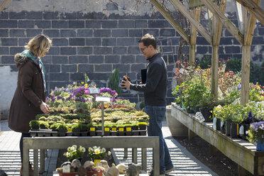Coworkers examining plants in garden center - CAVF53887