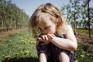 Close-up of cute thoughtful girl sitting on field during sunny day - CAVF53938