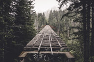 Abandoned railway bridge amidst trees in forest - CAVF54045