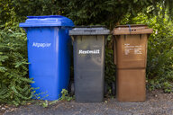 Three different dustbins for waste separation - TCF05961