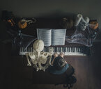 High angle view of boy playing piano while sitting by skeleton during Halloween - CAVF54232