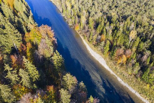 Germany, Upper Bavaria, Isar river, Nature Reserve Isarauen - SIEF08123