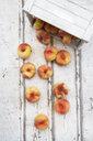 Doughnut peaches, wooden box on white wood - LVF07543
