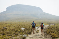 Rear view of female hikers with dogs walking on field against mountain - CAVF54815