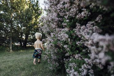 Rear view of shirtless baby boy walking on grassy field at backyard - CAVF54893
