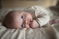 Portrait of cute baby boy with finger in mouth lying on bed - CAVF54902