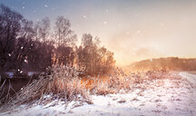 A snow covered field in winter - INGF07518