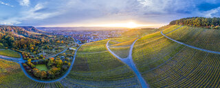 Germany, Baden-Wuerttemberg, Aerial view of Korber Kopf, vineyards at sunset in autumn, panorama - STSF01800