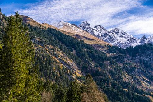 Germany, Bavaria, Oberallgaeu, Allgaeu Alps, Stillach Valley - STSF01809