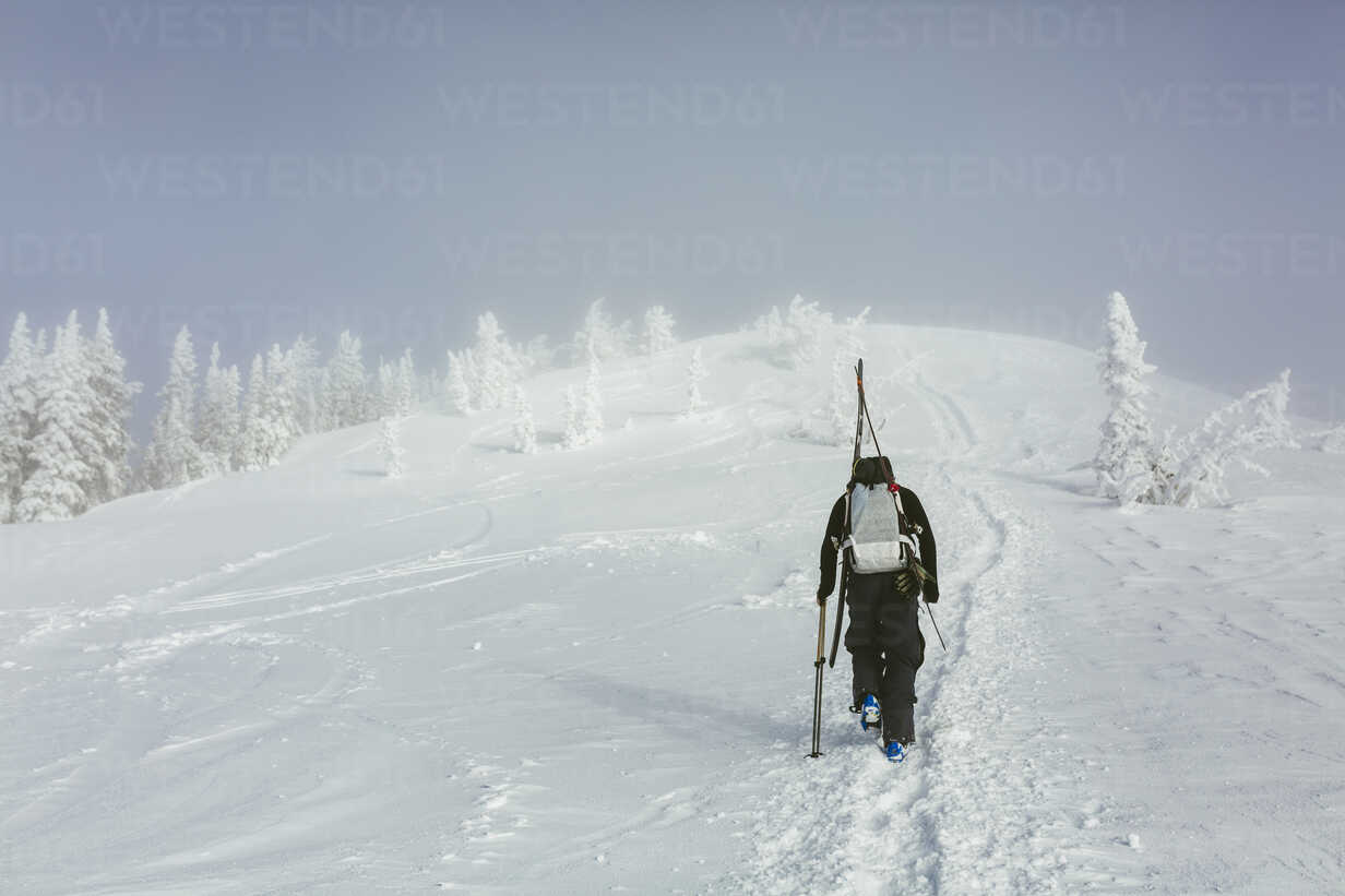 Rear view of hiker with backpack and ski walking on snowy hill during winter - CAVF55044 - Cavan Images/Westend61