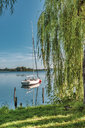 Germany, Mecklenburg-Western Pomerania, Zarrentin, Lauenburg Lakes Nature Park, Lake Schaalsee, sailing boat - FRF00767