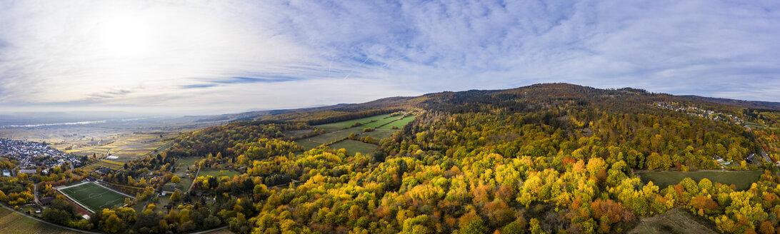 Germany, Hesse, Oestrich-Winkel, Rheingau, Aerial view in autumn - AMF06229