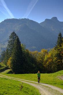 Germany, Bavaria, Upper Bavaria, Chiemgau, near Schleching, Achen Valley, hiker on hiking trail - LBF02259