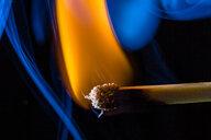 Burning matchstick, macro - HMEF00110
