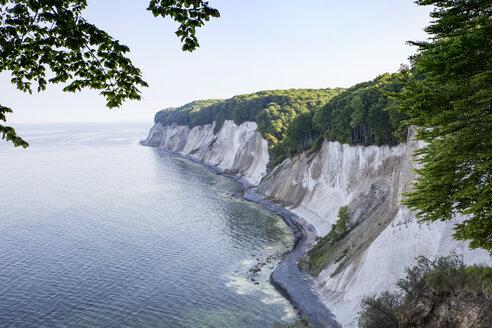 Germany, Mecklenburg-Western Pomerania, Ruegen, Jasmund National Park, chalk cliff - MAMF00237