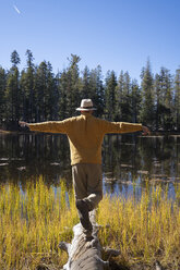 USA, California, Yosemite National Park, hiker standing on tree trunk in autumn - KKAF03012