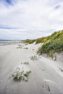 Germany, Mecklenburg-Western Pomerania, Zingst, beach - FDF00259