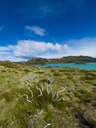 Chile, Patagonia, Torres del Paine National Park, Lago Nordenskjold - AMF06269