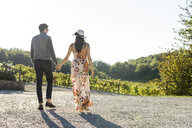 Italy, Tuscany, Siena, young couple walking hand in hand in a vineyard - FBAF00195