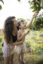 Side view of mother holding shirtless son while picking fruit from branches at community garden - CAVF56259