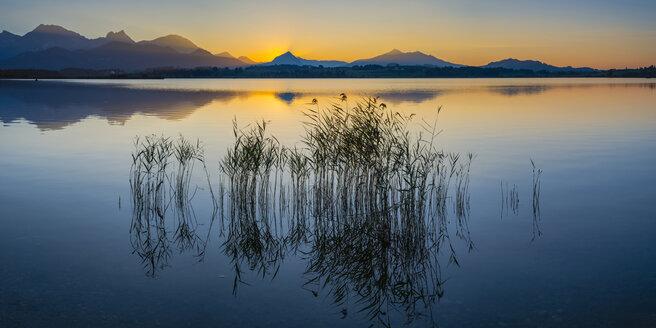 Germany, East Allgaeu, near Fuessen, Lake Hopfensee at sunset - WGF01272