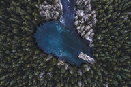 Aerial view of trees growing by lake in forest - CAVF56508