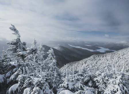 Idyllic view of snow covered trees against cloudy sky at forest - CAVF56529