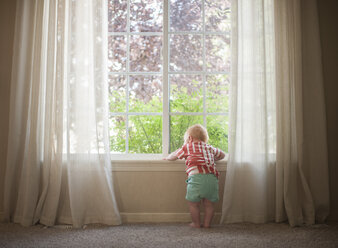 Rear view of baby boy looking through window at home - CAVF56720