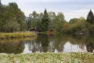 Germany, Bavaria, Oberallgaeu, Moorweiher near Oberstdorf - WIF03671