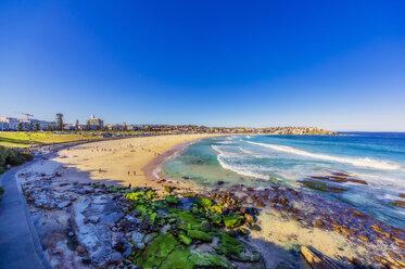 Australia, New South Wales, Sydney, Bondi Beach - THAF02386