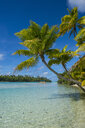Cook Islands, Rarotonga, Aitutaki lagoon, white sand beach and palm beach - RUNF00287