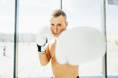 Portrait of boxer boxing at the window - OCMF00130