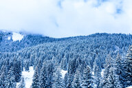 Scenic view of snow covered mountains in winter - INGF08224