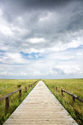 Tranquil scene of a boardwalk in a field on a cloudy day in Germany - INGF08242