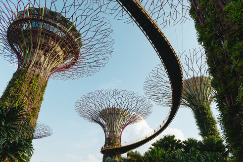 Singapore, Gardens by the Bay, Supertree Grove with platforms at a sunny day - GEM02632