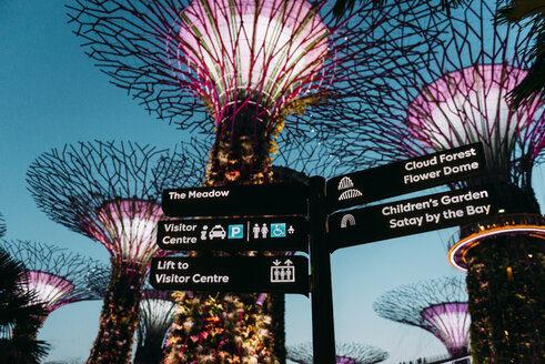 Singapore, Gardens by the Bay, Supertree Grove at night - GEM02647