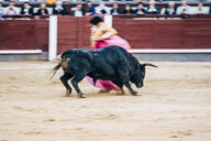 Bullfighting, torero and bull - OCMF00149