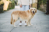 Woman with her golden retriever dog on a path - RAEF02236