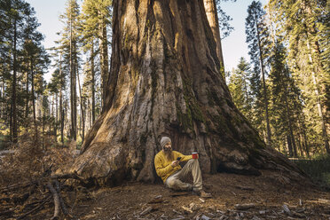 USA, California, Yosemite National Park, Mariposa, man sitting at sequoia tree with cell phone and mug - KKAF03043