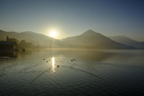 Germany, Upper Bavaria, Lake Schliersee, morning mood at spa park - LBF02276