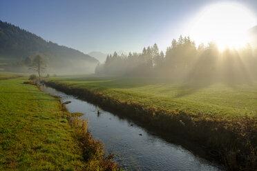 Germany, Upper Bavaria, Aurach near Fischbachau, morning fog - LBF02285