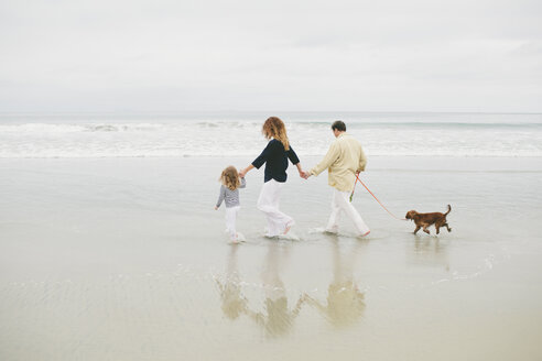 Family holding hands while walking with dog on shore against sky at beach - CAVF58285